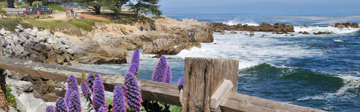 Monterey Attractions & Things to Do